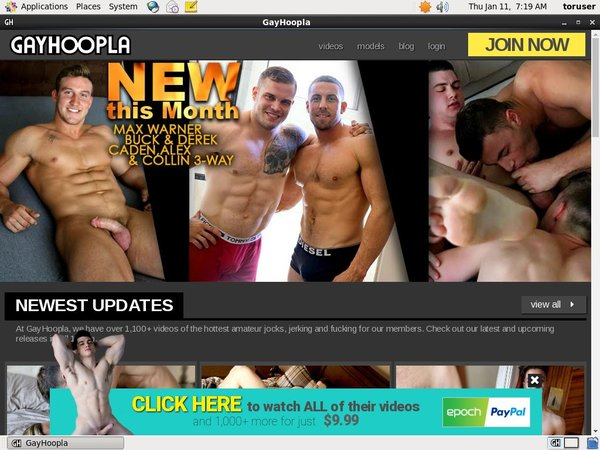 Gay Hoopla Cheaper Price