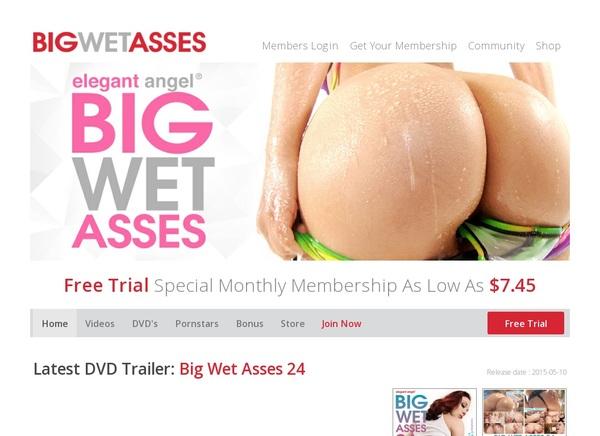 Big Wet Asses Account Info