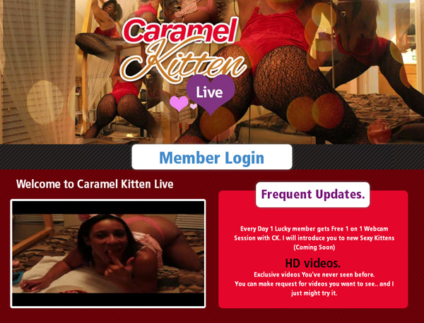 Caramel Kitten Live With Bank Account